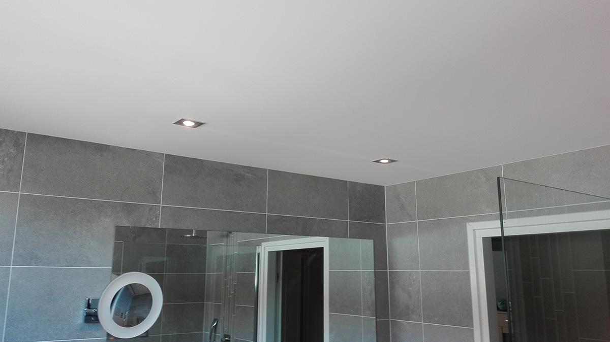 Badkamer Enschede - Spanplafond Totaal